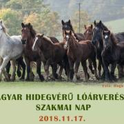 Magyar Hidegvérű Lóárverés és Szakmai Nap – Bőszénfa 2018. 11. 17.